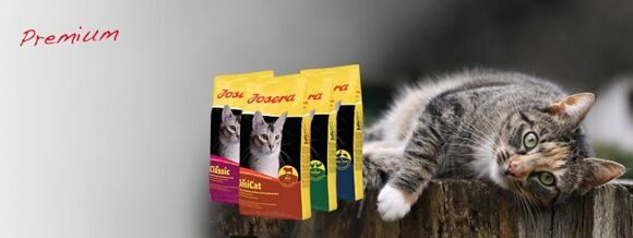 slider-premium-cat-food